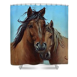 Waylon And Jimmy Shower Curtain
