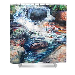 Wayside Brook Shower Curtain