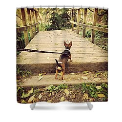 We All Have Our Paths Shower Curtain