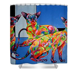 We Are Siamese If You Please Shower Curtain by Sherry Shipley