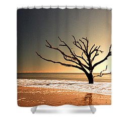 Shower Curtain featuring the photograph We Can Be Heroes by Dana DiPasquale