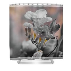 Shower Curtain featuring the photograph We Fade To Grey Freesia's by Lance Sheridan-Peel
