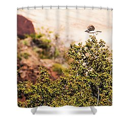 Shower Curtain featuring the photograph We Have Takeoff by Onyonet  Photo Studios