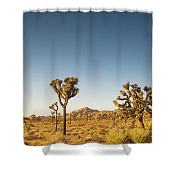 We Love This Sunset Shower Curtain