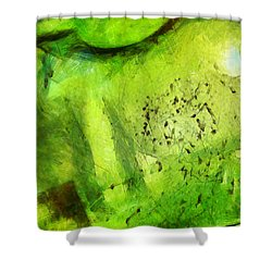 Shower Curtain featuring the painting We Must Carefully Examine Change by Sir Josef - Social Critic - ART