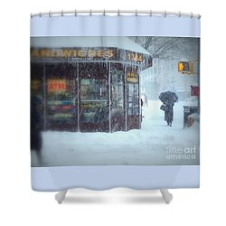 We Sell Flowers - Winter In New York Shower Curtain