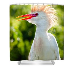 Wearing His Colors Shower Curtain by Christopher Holmes