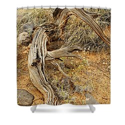 Weather Tree And Wildflowers Shower Curtain