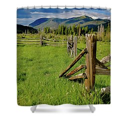 Weathered But Standing Shower Curtain