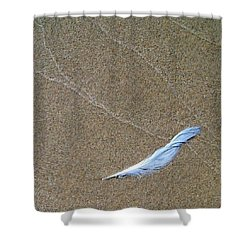 Weathered Feather  Shower Curtain by Michelle Calkins