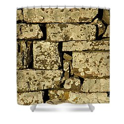 Shower Curtain featuring the photograph Weathered by Kennerth and Birgitta Kullman