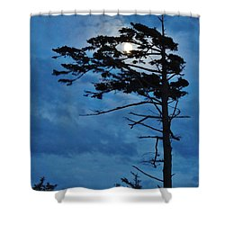 Weathered Moon Tree Shower Curtain