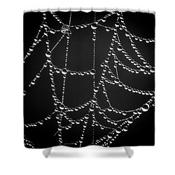 Web And Water Shower Curtain