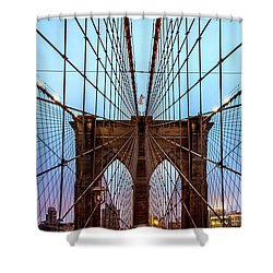 Web Of Passion Shower Curtain by Az Jackson