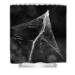 Web Tent Bw Shower Curtain