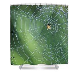 Webmaster Shower Curtain