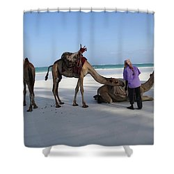 Wedding Camels In The Waiting ... Shower Curtain
