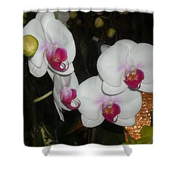 Wedding Orchids Shower Curtain