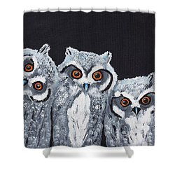 Wee Owls Shower Curtain