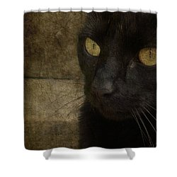 Shower Curtain featuring the photograph Wee Sybil  by Paul Lovering