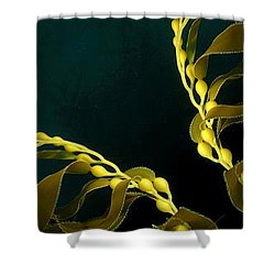 Weed 1 Shower Curtain by Ron Bissett