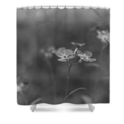 Weed 3 Shower Curtain by Simone Ochrym