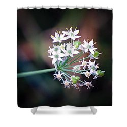 Weed Flower Shower Curtain