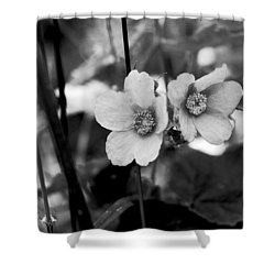 Weeds 1 Shower Curtain by Simone Ochrym