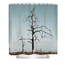 Weep Shower Curtain
