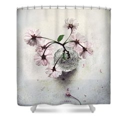 Weeping Cherry Blossoms Still Life Shower Curtain by Louise Kumpf