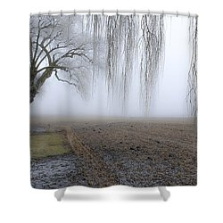 Weeping Frozen Willow Shower Curtain by Amy Fearn