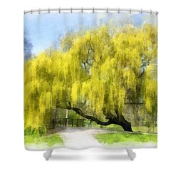 Weeping Willow Aquarell Shower Curtain