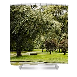 Weeping Willow Trees On Windy Day Shower Curtain