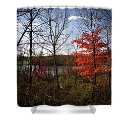 Shower Curtain featuring the photograph Wehr Wonders by Kimberly Mackowski