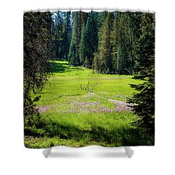 Welcom To Life- Shower Curtain