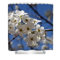 Welcome Colorado Spring Shower Curtain