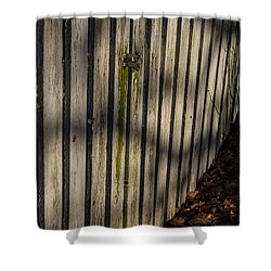 Shower Curtain featuring the photograph Welcome To The Backyard by Odd Jeppesen
