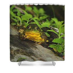 Welcome To The Pond Shower Curtain by Susan  Dimitrakopoulos