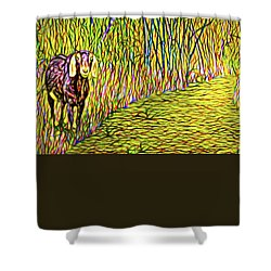 Welcoming Goats Shower Curtain by Joel Bruce Wallach