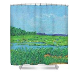 Wellfleet Wetlands Shower Curtain