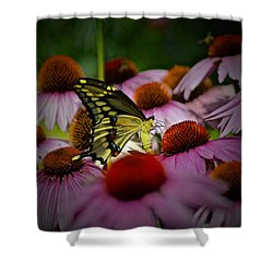 Went To A Garden Party Shower Curtain by Tim Good