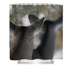 We're All Ears Shower Curtain by Sandra Bronstein