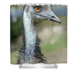 Emu 2 Shower Curtain by Werner Padarin