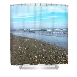 West End Seashells Shower Curtain