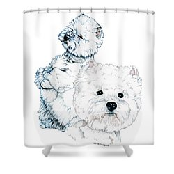 West Highland White Terriers Shower Curtain by Kathleen Sepulveda