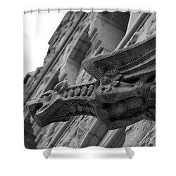 West Point Gargoyle Shower Curtain