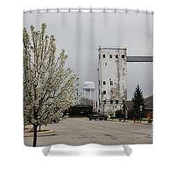 West Reed Street Shower Curtain