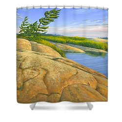 Shower Curtain featuring the painting Wind Swept by Michael Swanson