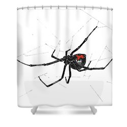 Western Black Widow - Color Shower Curtain