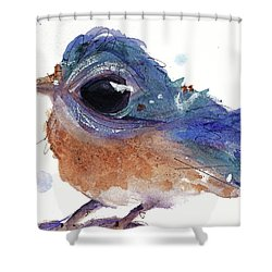 Shower Curtain featuring the painting Western Bluebird by Dawn Derman